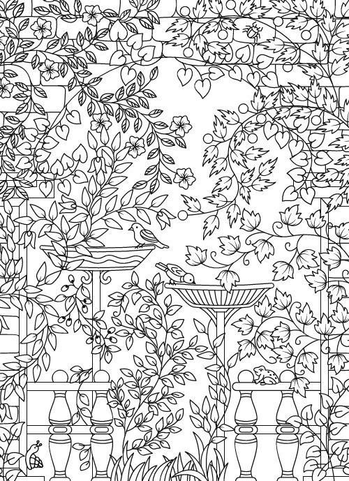 free printable secret garden coloring pages | Amazon.com: Hidden Garden: An Adult Coloring Book with ...