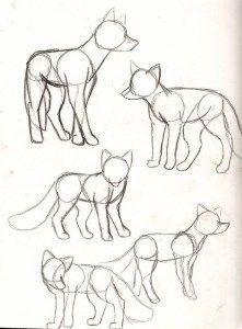 Photo of 40 Kostenlose und einfache Tierzeichnungsinformationen und Zeichenideen