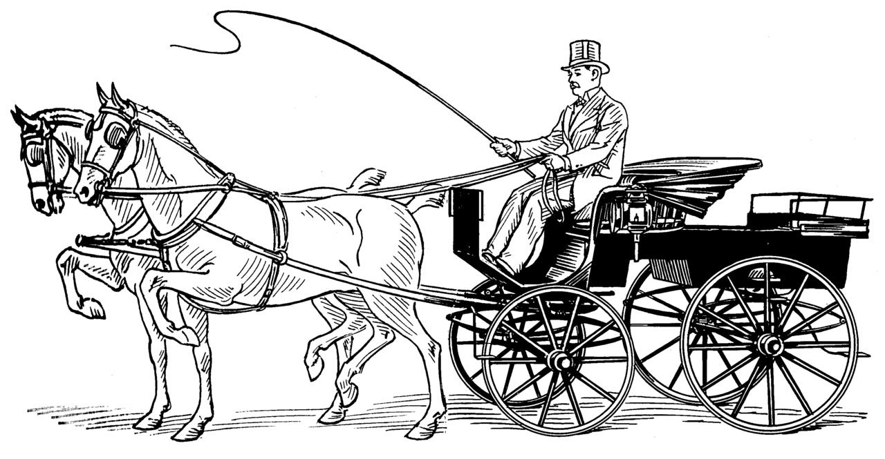 Phaeton Psf Phaeton Carriage Wikipedia The Free Encyclopedia Horses Free Horses Horse Drawn