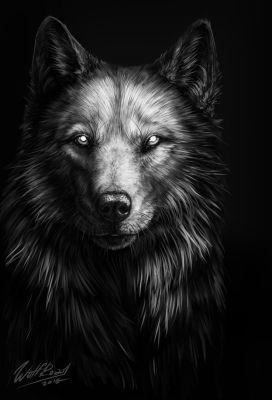Kreuz By Wolfroad On Deviantart Wolf Artwork Wolf Art Shadow Wolf