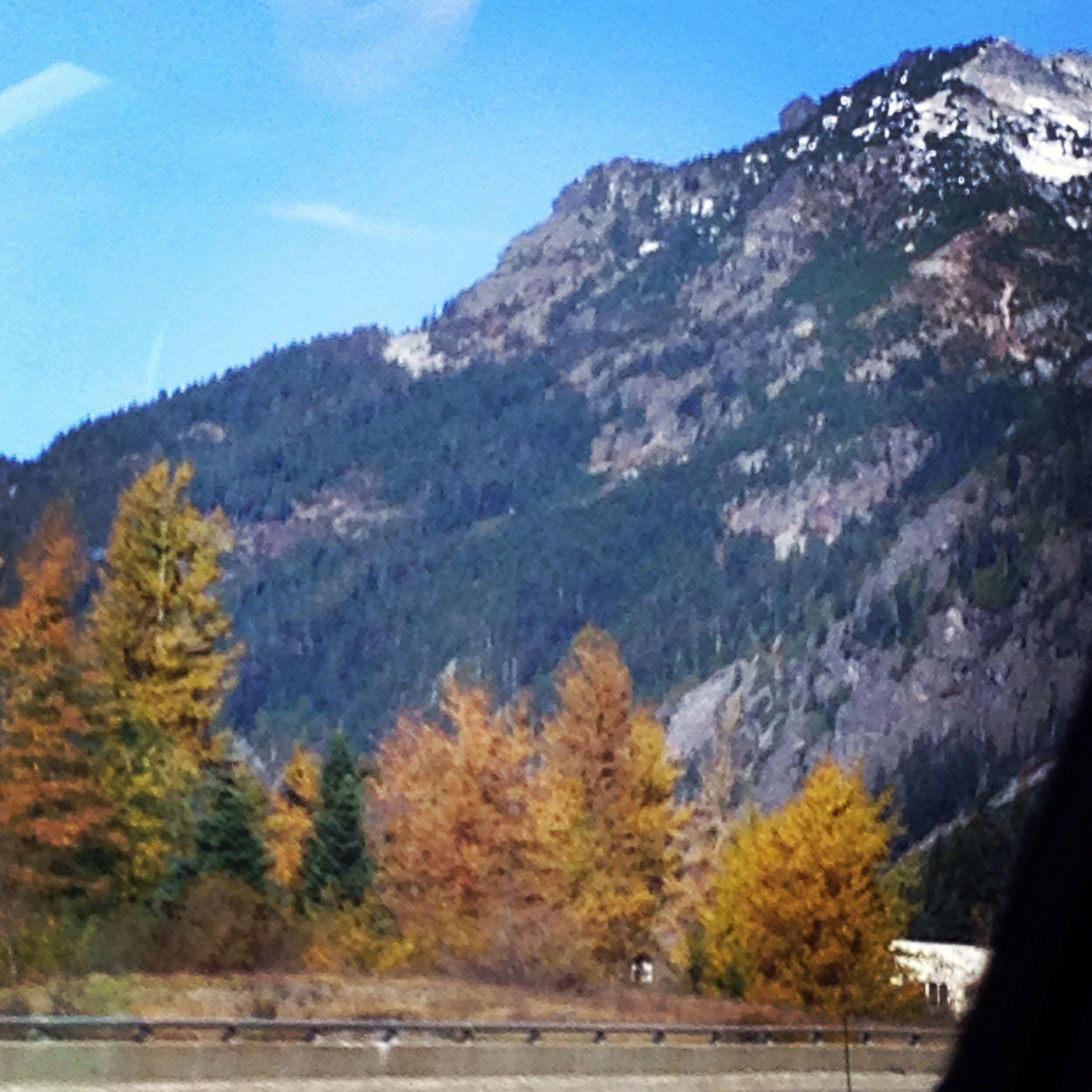 Drive to Seattle, WA during the fall <3 #WAstate #Beautiful