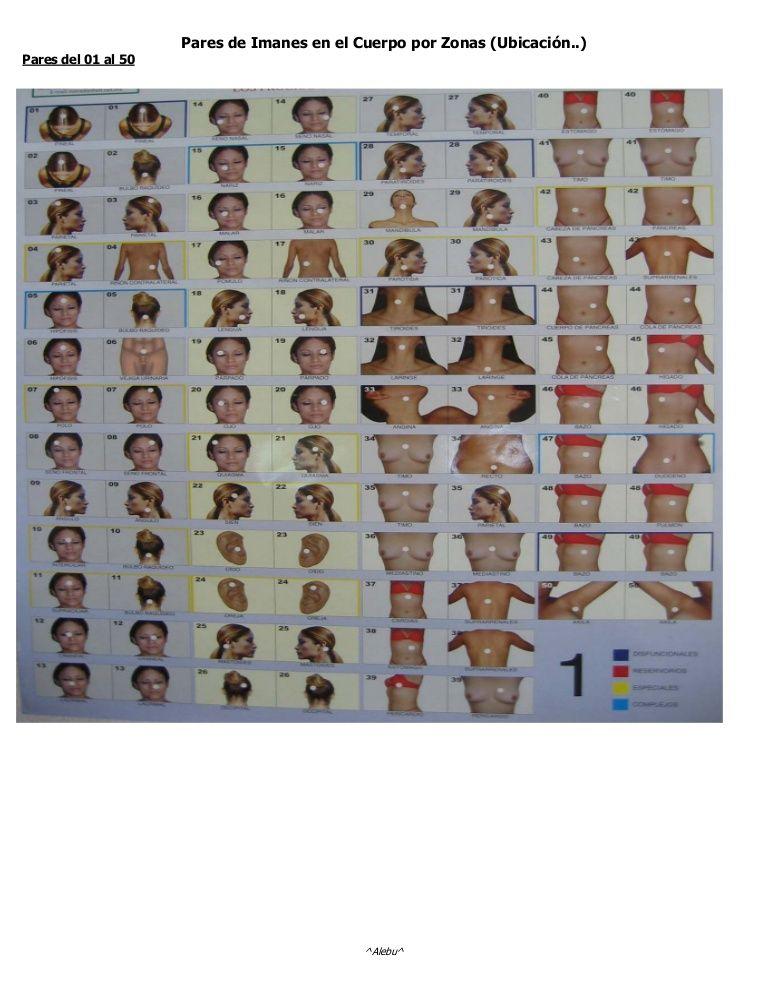 Pares de Imanes en el Cuerpo por Zonas (Ubicación..)Pares del 01 al ...