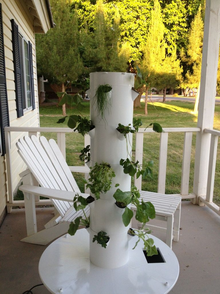 Check out our Juice Plus tower garden at www.verdesalon
