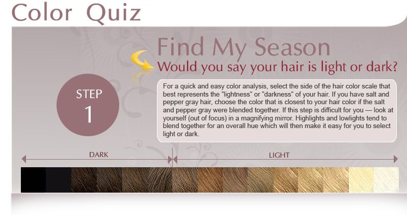 Find Your Season Or What Season Am I Would You Say Your Hair Is