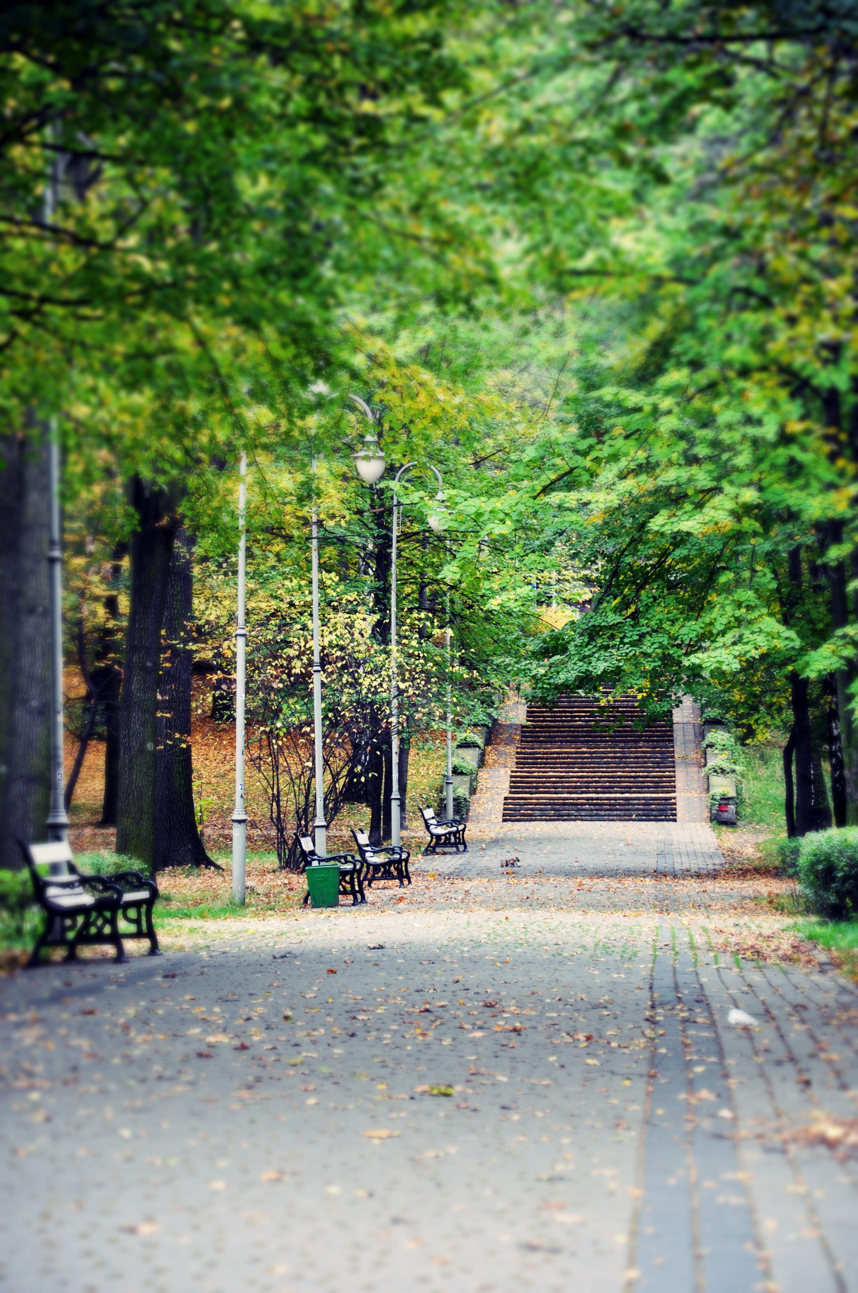 Katowice Park Kosciuszki Poland Poland Poland History Europe
