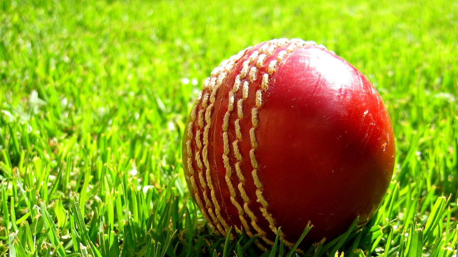 Cricket 1080p Wallpaper Http Wallpapers And Backgrounds Net Cricket 1080p Wallpaper Cricket Balls Cricket Wallpapers Cricket