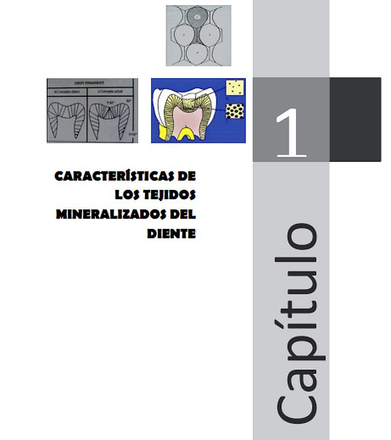 LIBRO: Fundamentos de Operatoria Dental - PDF