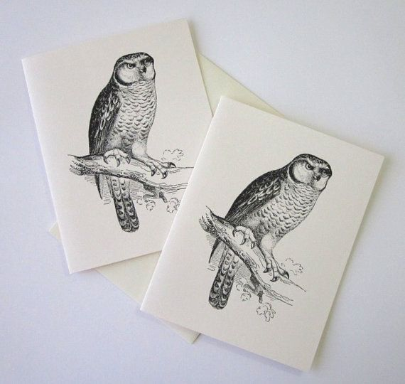 Owl Note Cards Stationery Set of 10 Cards by PetitePaperie on Etsy, $10.00