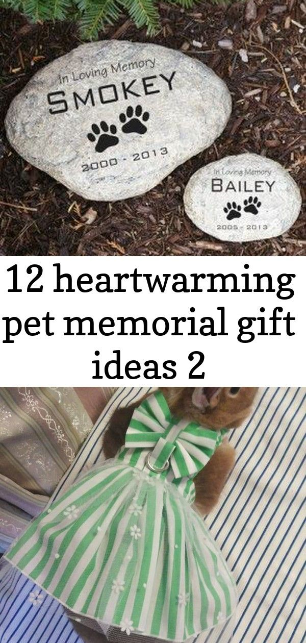 12 heartwarming pet memorial gift ideas 2 I want to make something like this for Mom. Might give her the motivation to get her garden back in shape even though her gardening buddy is gone.  can these two buns drop an album yet ? Micro or mini pigs are now a very popular animal. Learn the proper care needed when owning a mini pig by reading this guide. From pen sizes, products and feed this article will give you tips on how to love and take care of your newest pet!