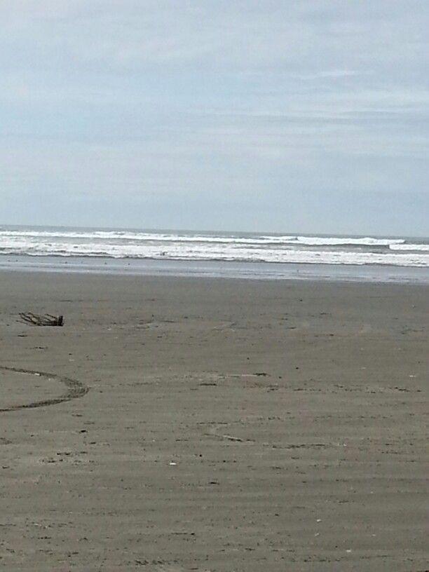 Copalis Beach WA | Beach, Washington state, Outdoor