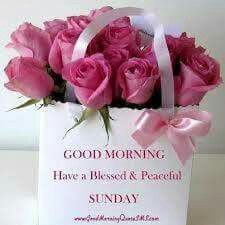 Good morning Blessed Sunday..