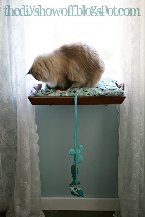 DIY How to Make a Cat Window Perch Cat window, Cat