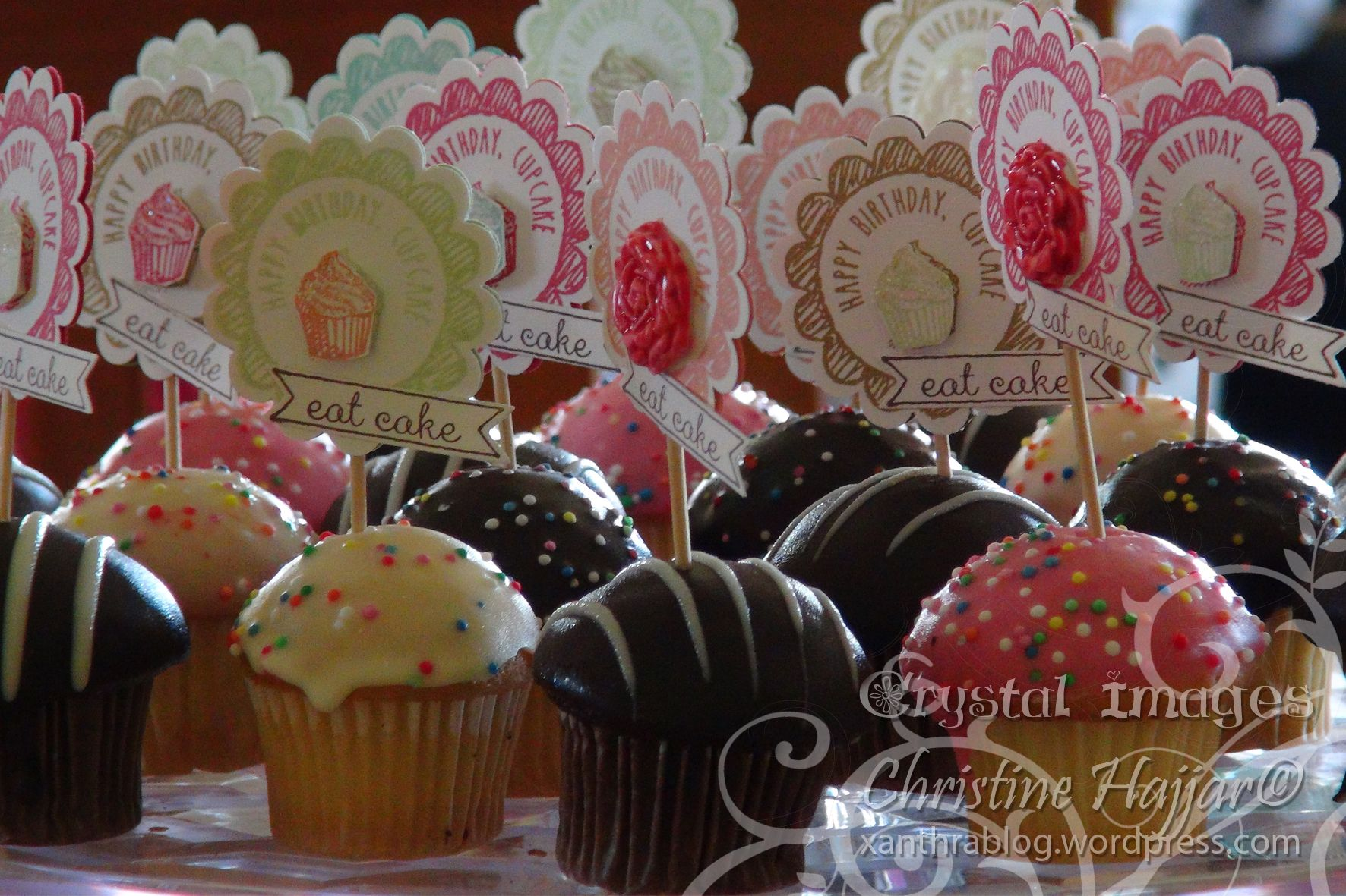Stampin' Up! Scallop Punch Cup Cake Toppers. 2013-2014 In Colours.