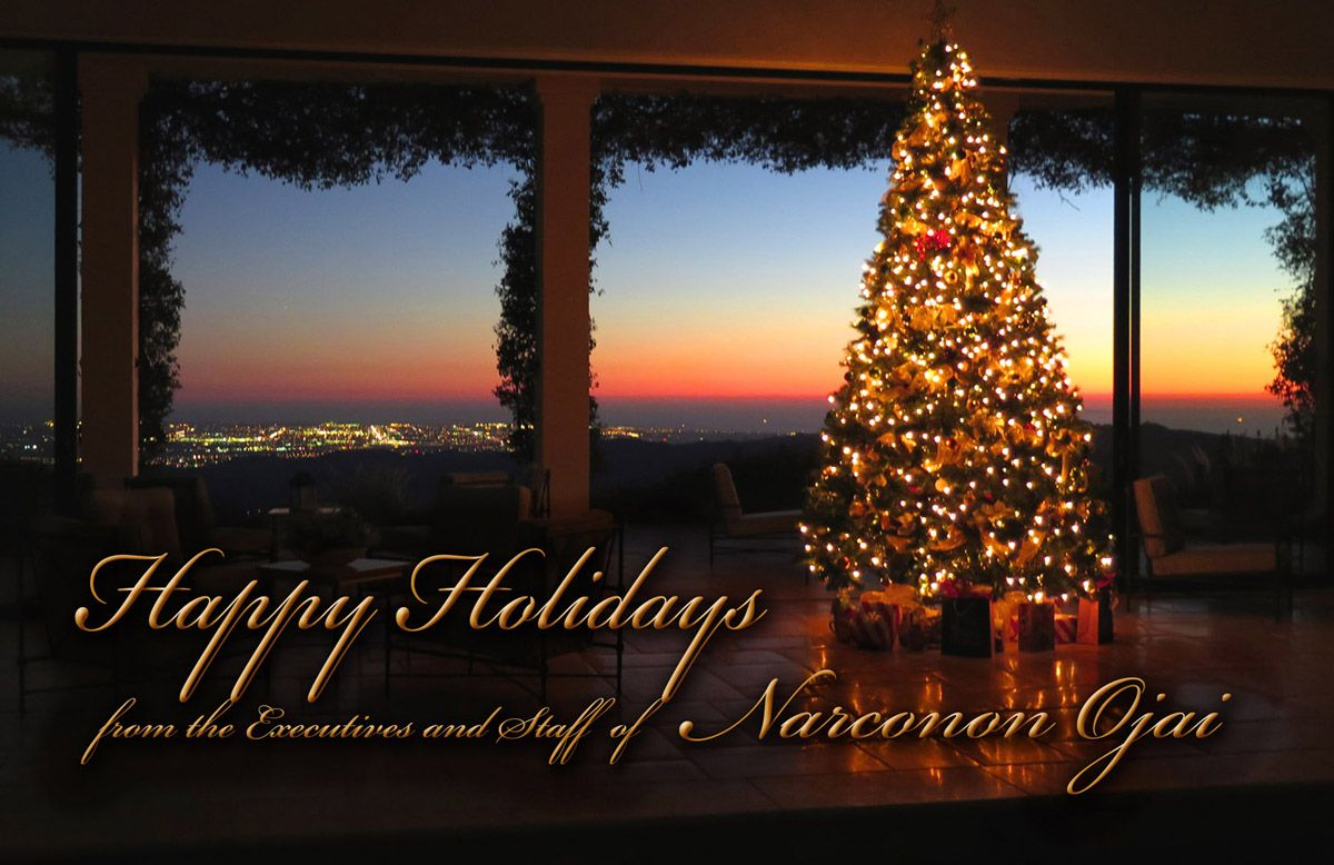 Happy holidays from the executives and staff of narconon