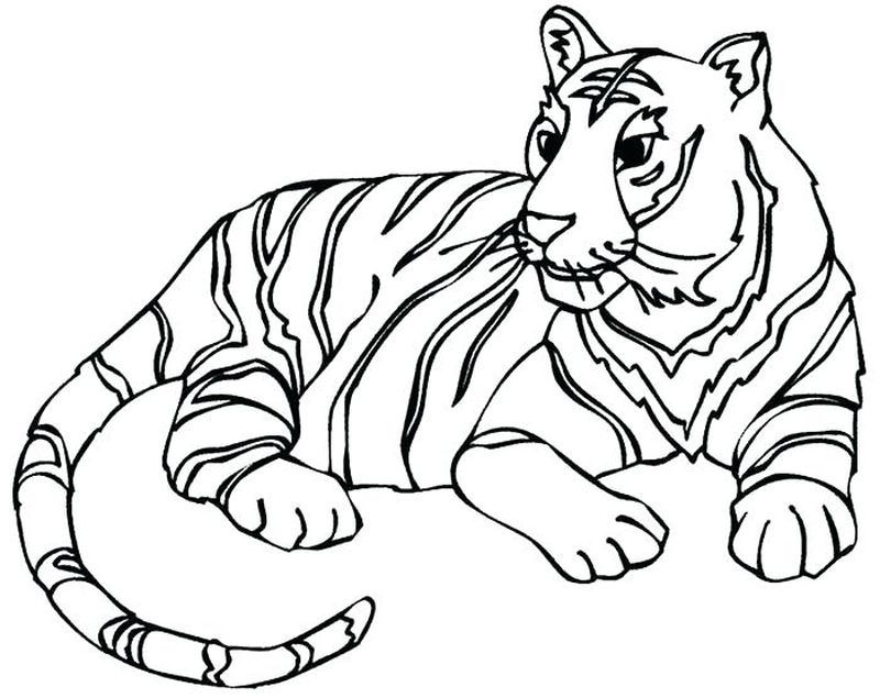 Auburn Tigers Football Coloring Pages Animal Coloring Pages Animal Line Drawings Butterfly Coloring Page