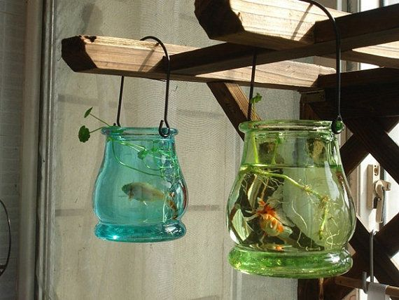 Glass Hanging Container For Water Plants Par