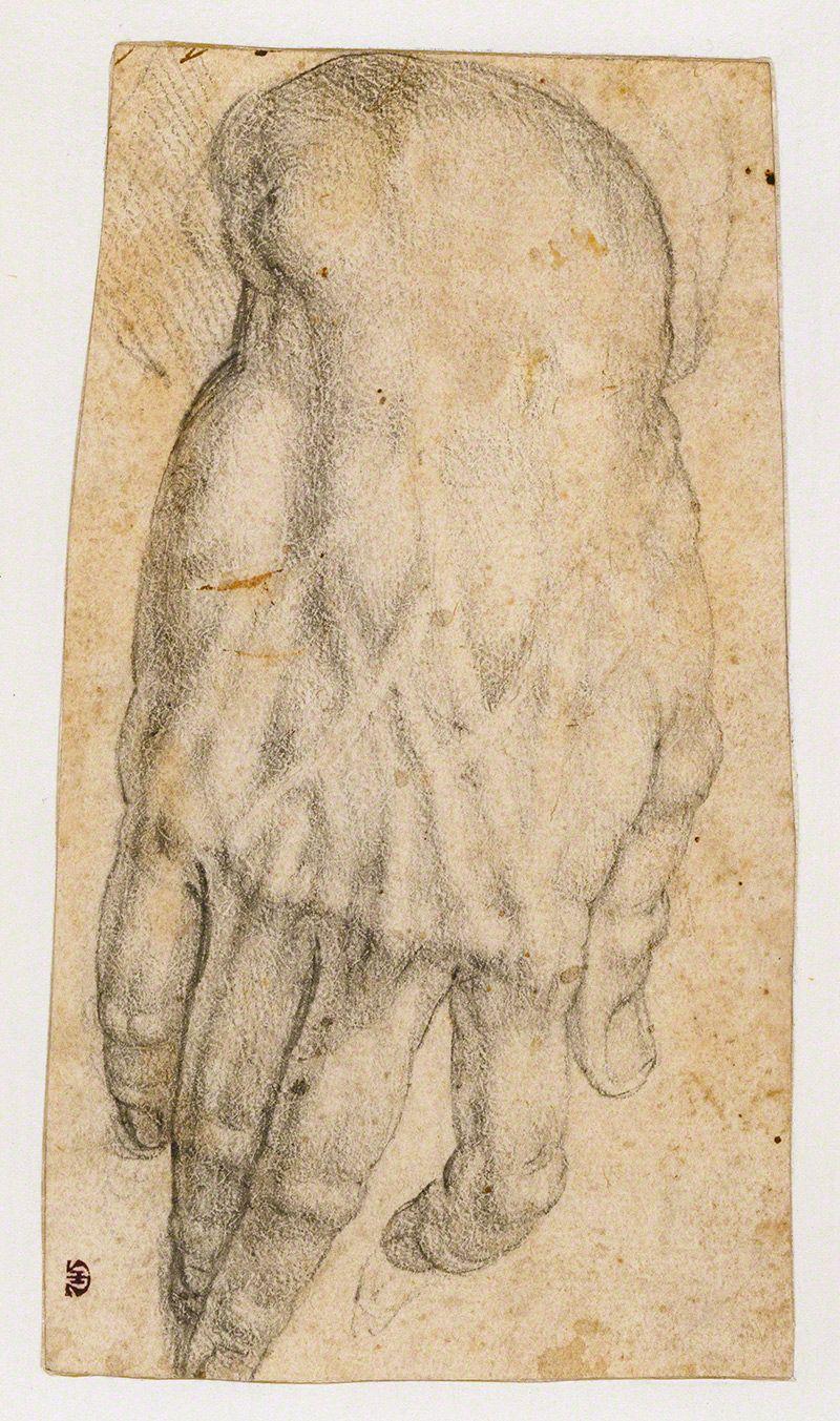 Bronzino, Study of a Hand 16th C. | Artists who inspire me ...