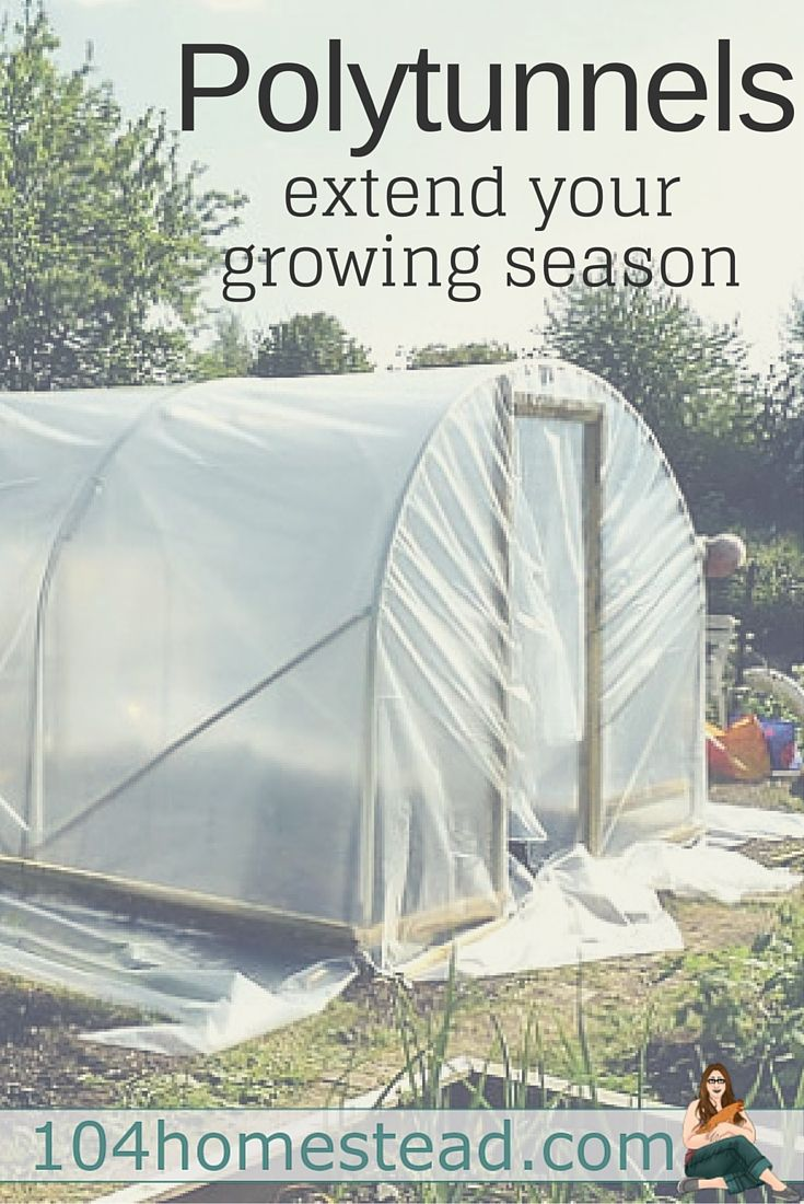 Extend Your Growing Season | ~{ Best of The 104 Homestead ...
