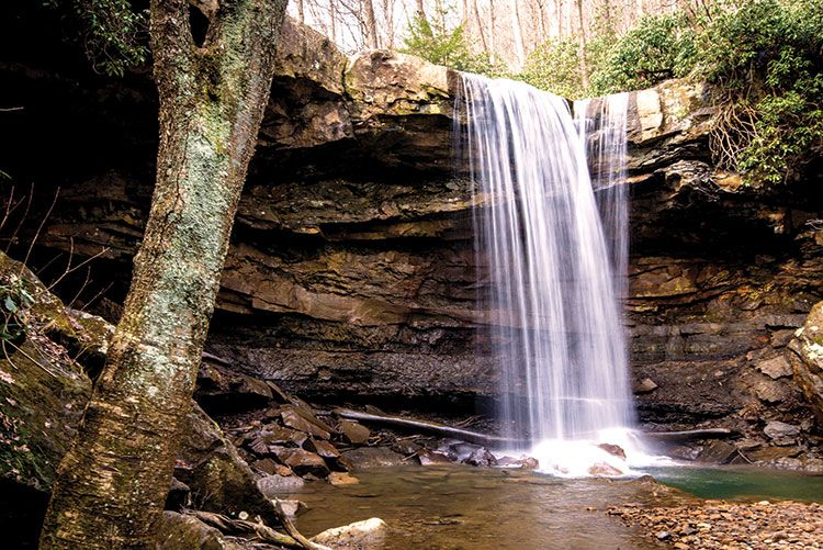 Take A Hike 10 Of The Best Trails In The Pittsburgh Area