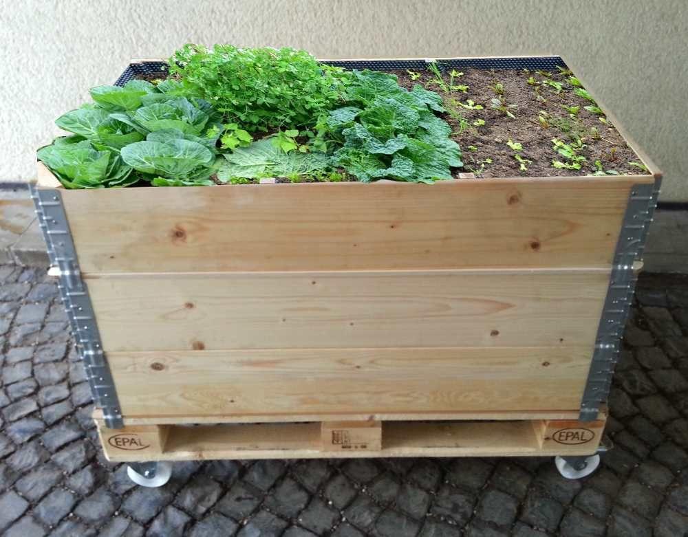 Urban Gardening In Hochbeeten Aus Euro Palettenrahmen Naturwurm Palettenrahmen Hochbeet Bett Aus Paletten