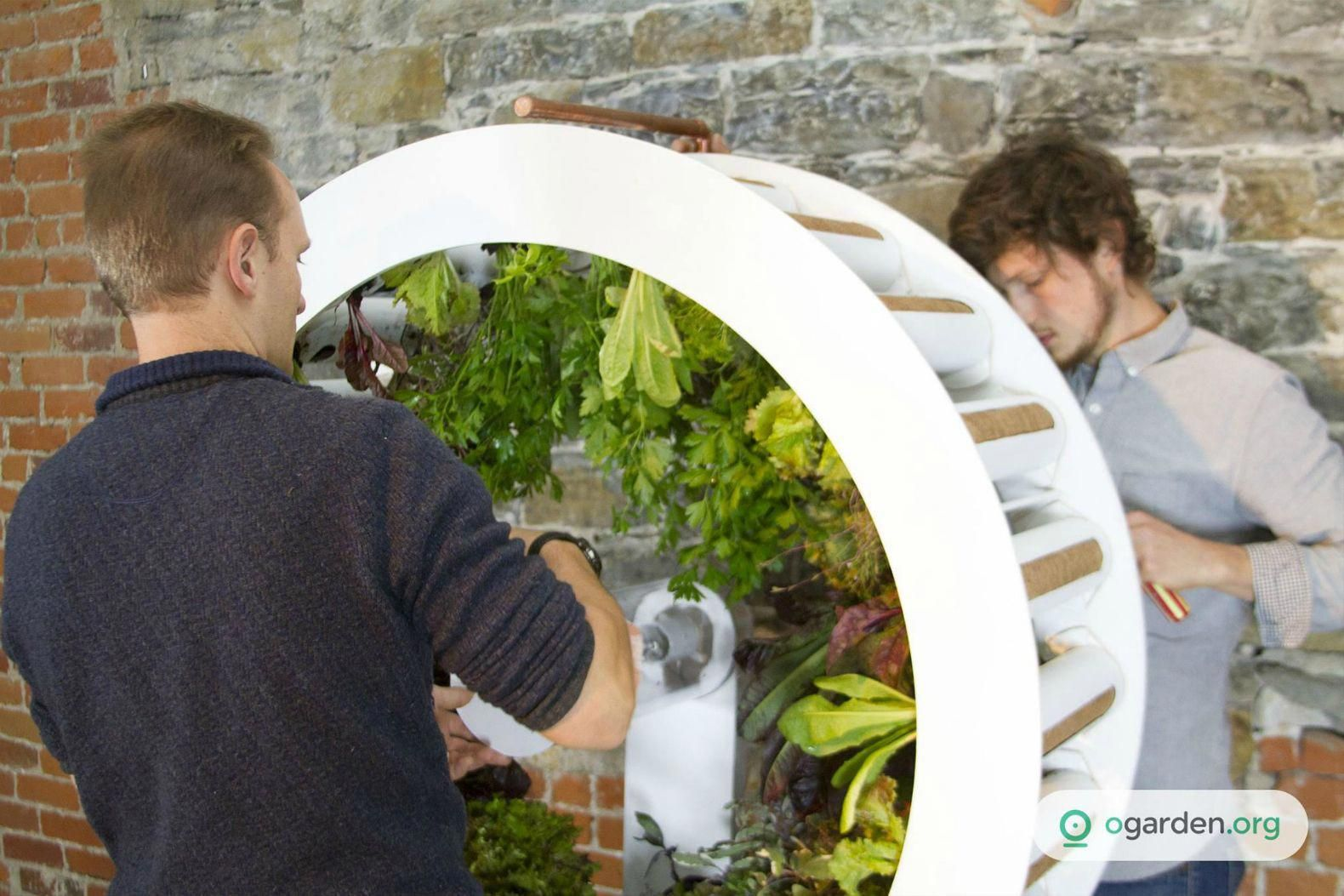 Rotating indoor garden grows up to 100 herbs and