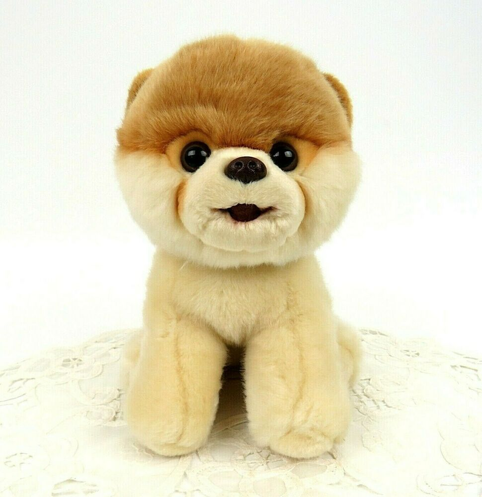 Boo worlds cutest dog pomeranian gund stuffed animal toy