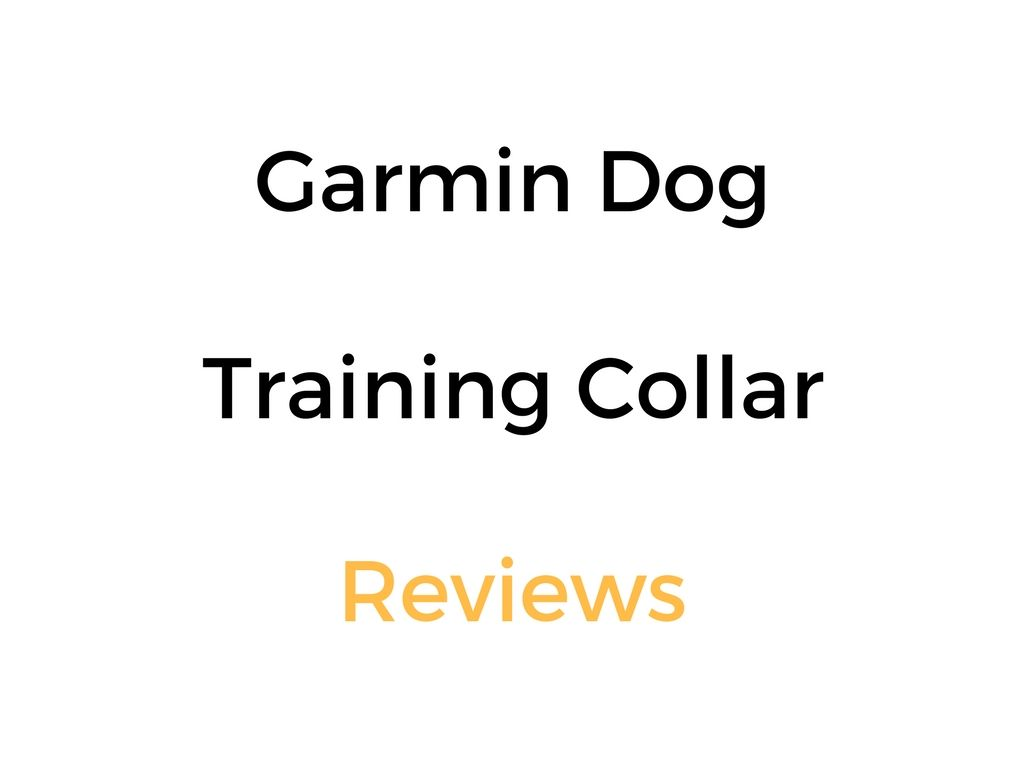 Garmin Remote Dog Trainer E Collar Reviews Guide Training