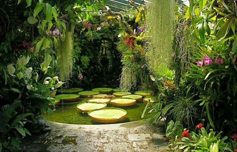 hidden water pond wow backyard water feature water on wow awesome backyard patio designs ideas for copy id=86388