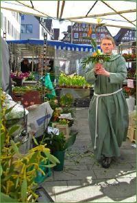 Blumenmönch auf dem Markt