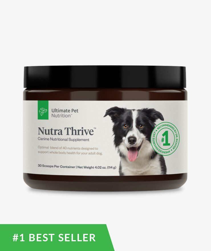 Nutra thrive dog ultimate pet nutrition animal