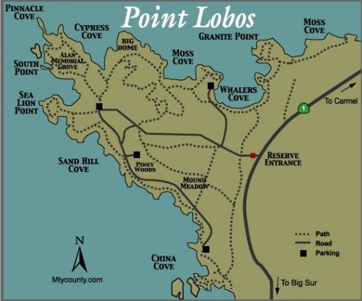 Photo Gallery of Point Lobos State Park | Travel | Point lobos state on