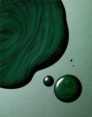 Photo of Colour of the month Many shades of Green – September — Suna & Toast – suna & toast