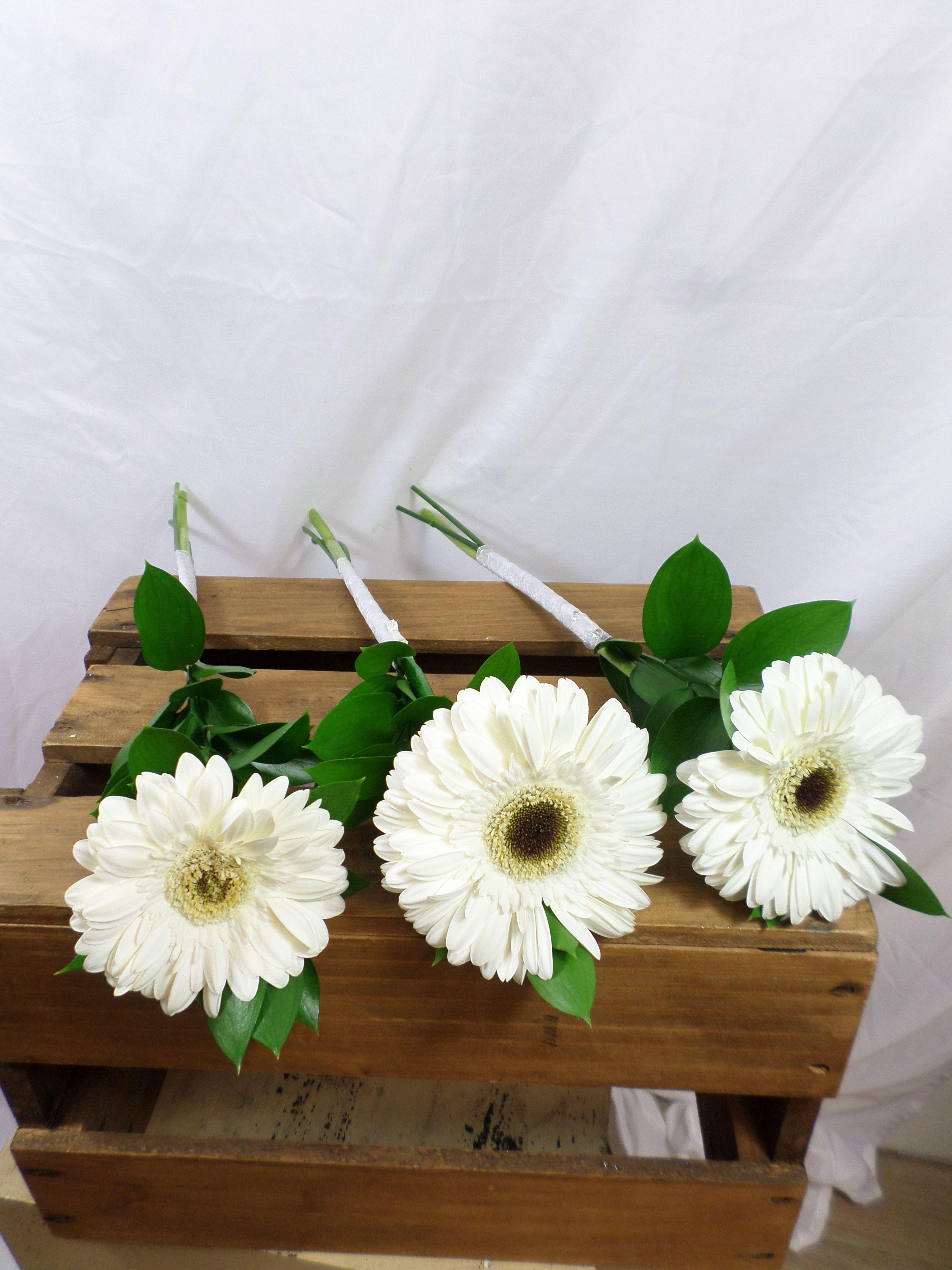 Simple single Gerbera stems with greenery for Bridesmaids. Designed by Florist ilene, Hamilton, NZ