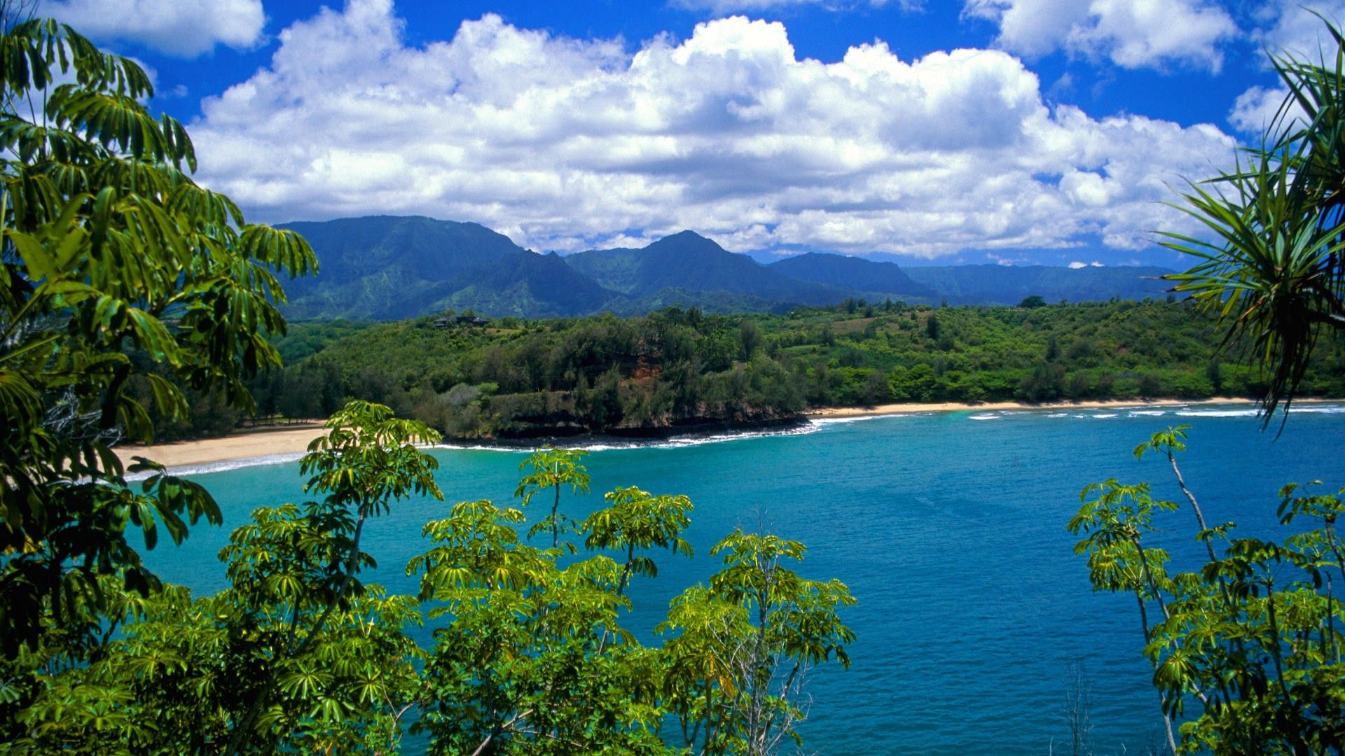 hawaii images wallpaper Download Beach World Hawaii