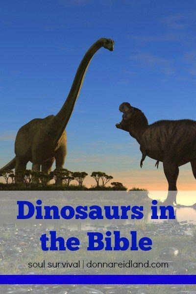 Dinosaurs & the Bible August 24 - Soul Survival