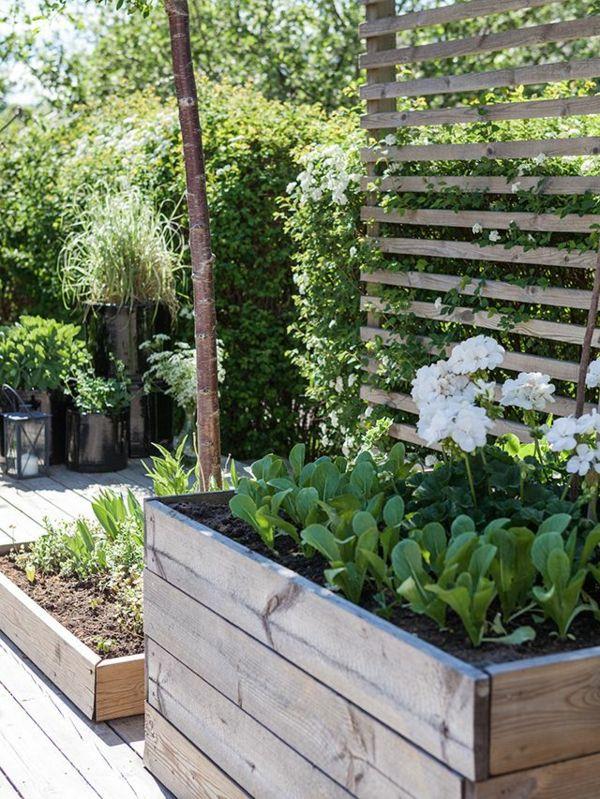Pflanzkasten Mit Rankgitter Interessante Exterieur Losungen Garten Pflanzen Garten Hochbeet Garten
