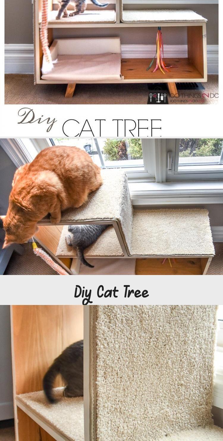 Diy Cat Tree Diy Cat Playground Diy Cat Scratching Post Kitten Playground Ki Cat Cat Diy Kitten Playground Post Scratching Tree Catplayground In 2020