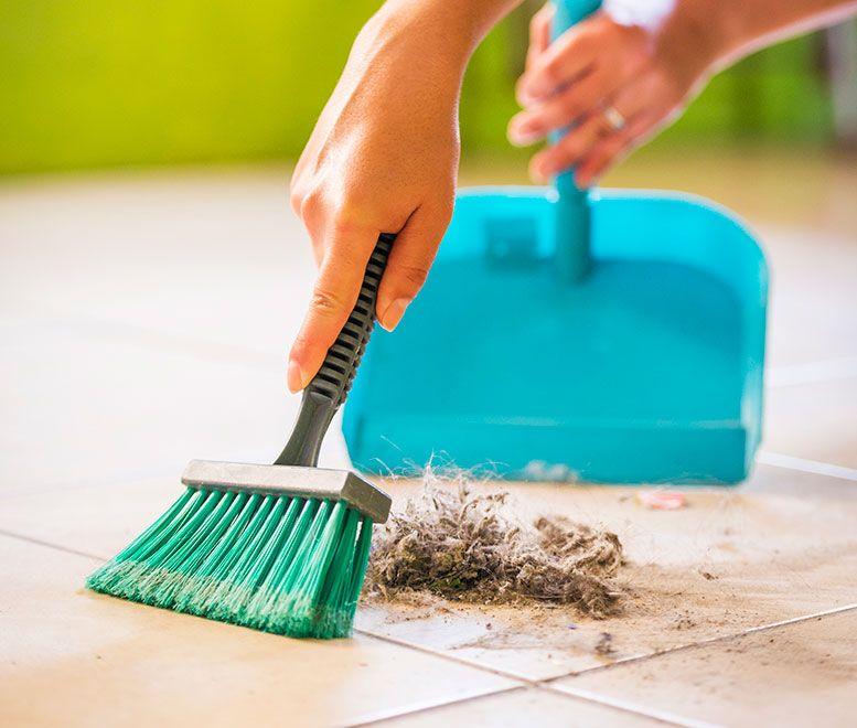 شركة تنظيف شقق بجدة أحسن أسعار شركات نظافة المنازل المعتمدة في جده Cleaning Services Company Apartment Cleaning Companies In Dubai