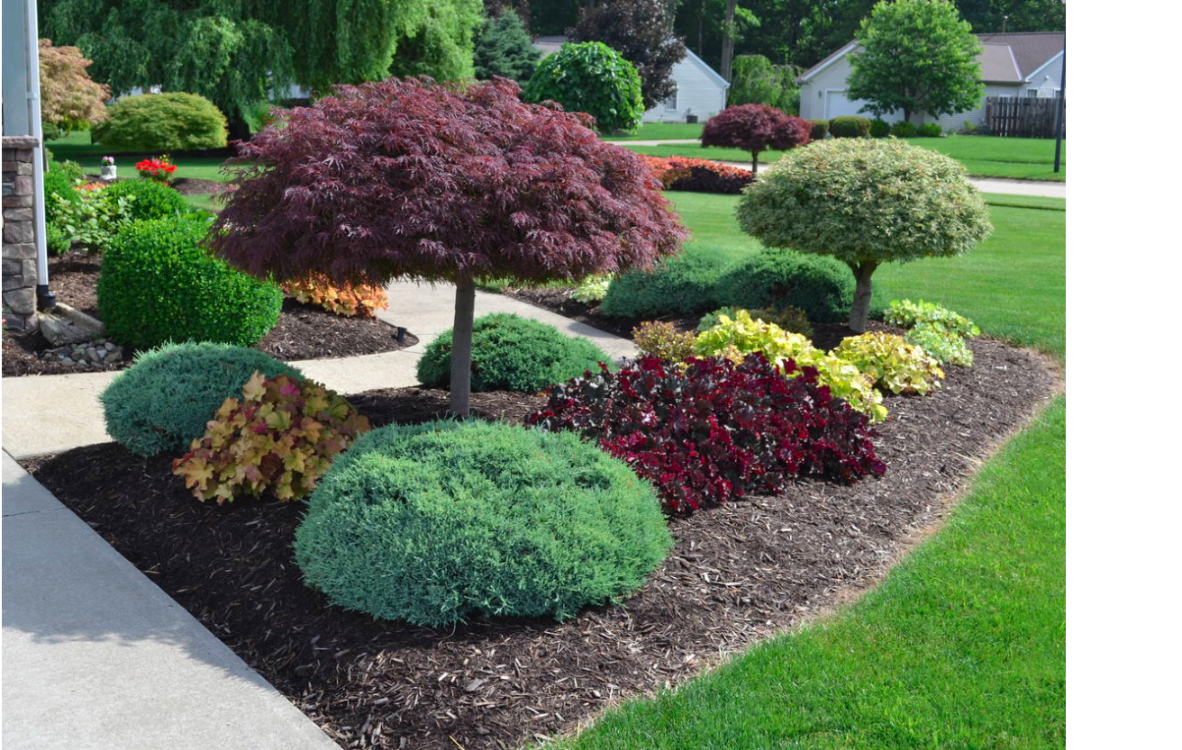 Kidney Shaped Front Yard Island Front Yard Landscaping Design Outdoor Landscaping Front Yard Landscaping