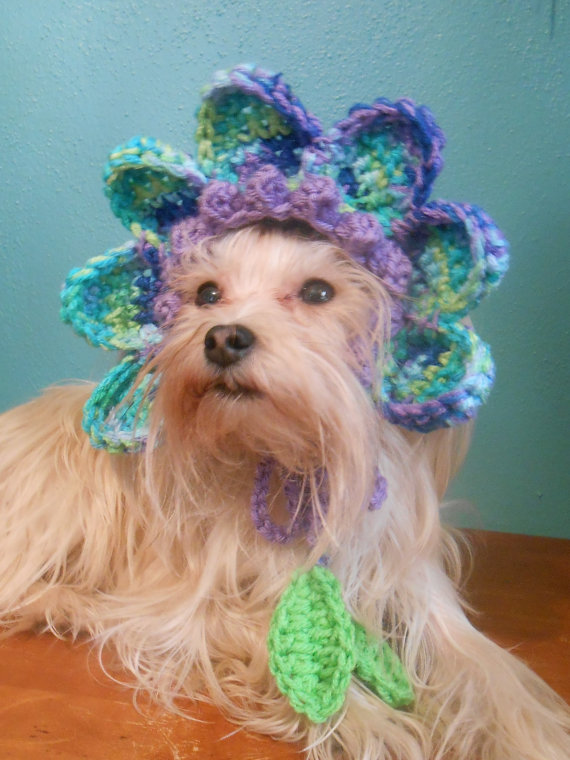 1e464e2d73b Flower Hat for Dog or Cat
