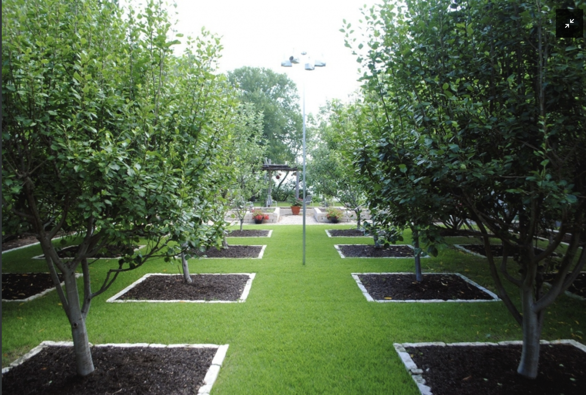 Pin by Custom Foodscaping on Suburban Edible Landscape ...