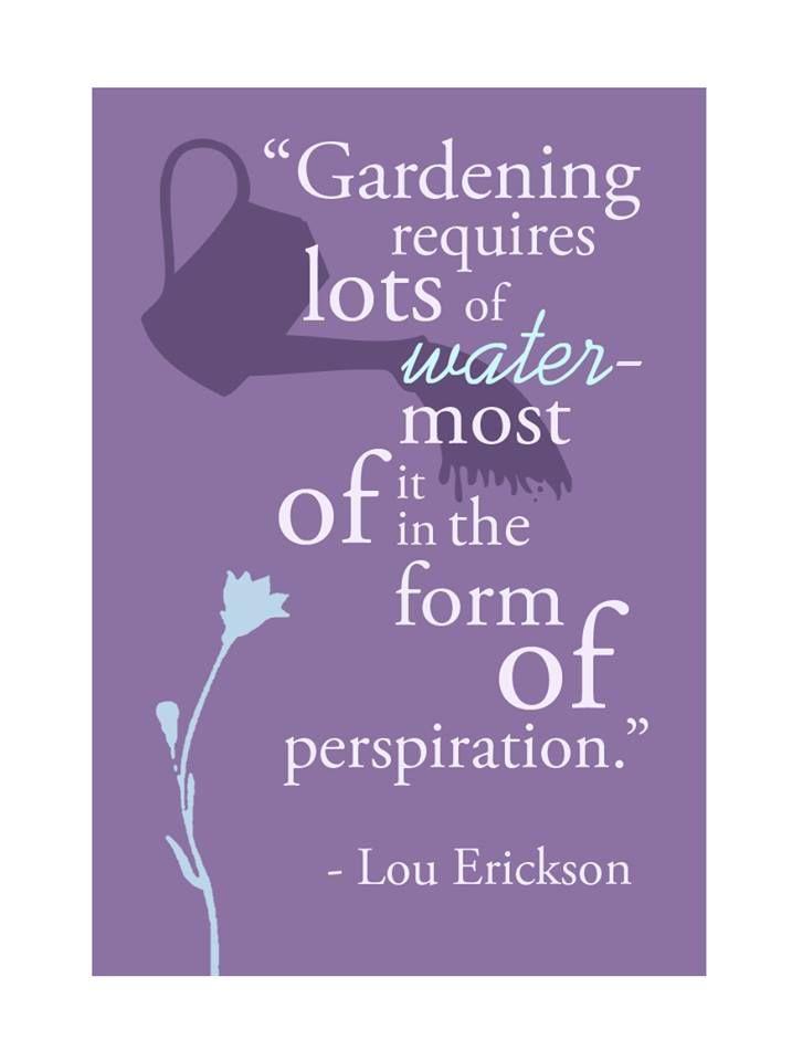 Pin by Jill Stevens on Quotes | Garden quotes, Garden ...