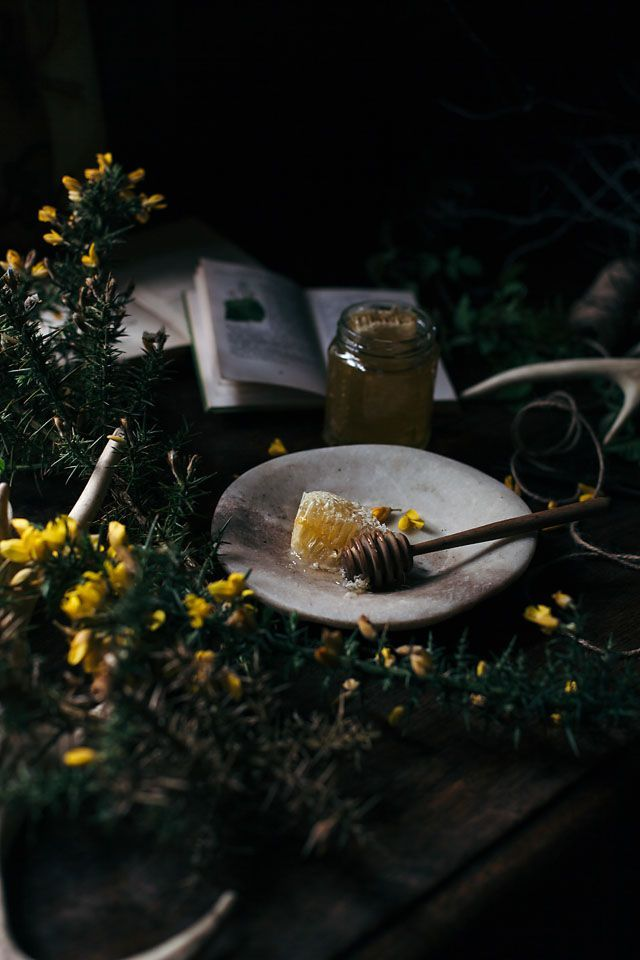 Food photography / visual storytelling workshop in beautiful south of England – Travelling oven