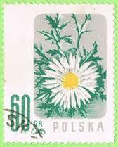 Znaczek Kwiaty Chronione Flower Stamp Stamp Thistle