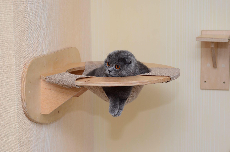 Cat Hammock Wall Cat Bed Wall Mounted Cat Shelf Wall Mount Cat