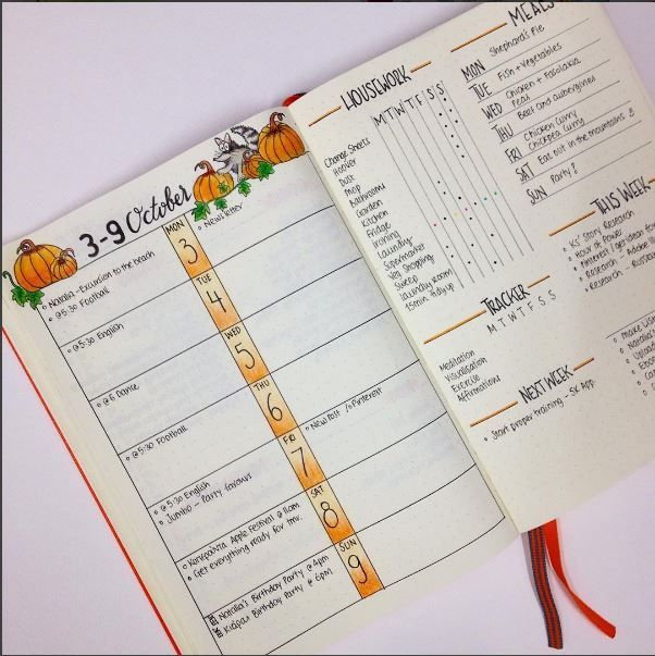 Weekly Spread Ideas for Your Bullet Journal Bullet, Journal and Bujo
