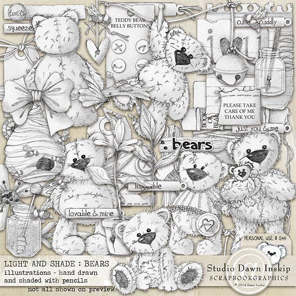 Light and Shade : Bears Illustrations