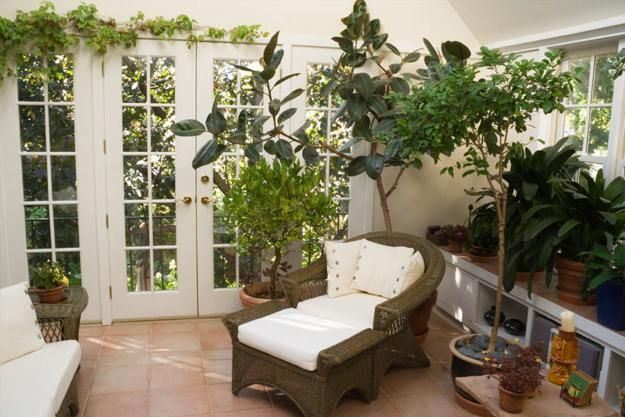 Photo of Sunrooms and Beautiful Winter Gardens with Lush Houseplants, Green Winter Decorating Ideas