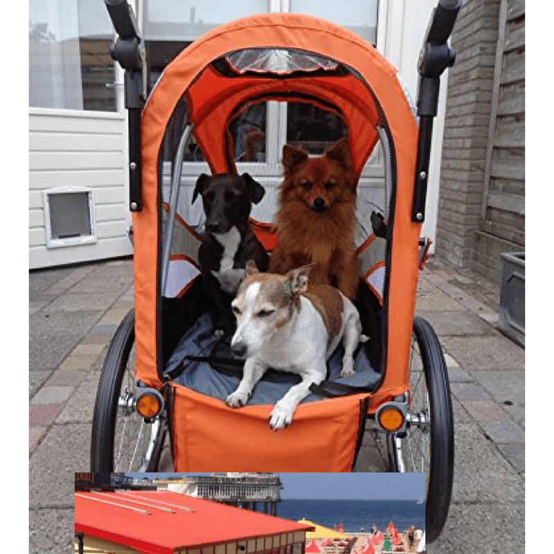 Sporty Pet Stroller and Bike Trailer incl Rain Cover by