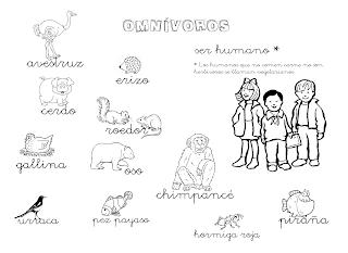 Que Puedo Hacer Hoy Animales Omnivoros Omnivoros Animales Herbivoros Dibujos Para Colorear Sencillos